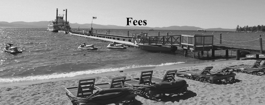 Our Services & Fees